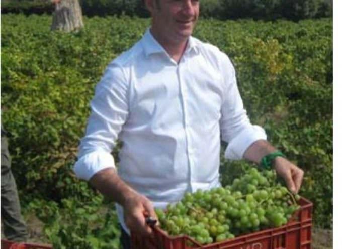 """Luca Zaia al Vinitaly di Verona: """"Tornerò a vendemmiare a Pantelleria"""""""