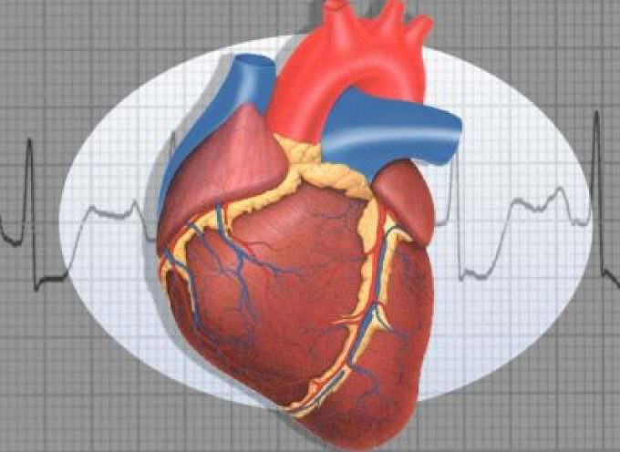 Folati e vitamina B6: coppia vincente per difendere il cuore