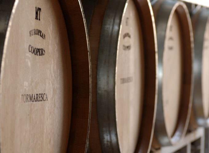 Tormaresca: the essence of Puglia's wines