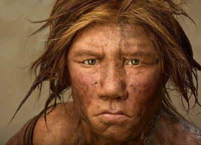 Anche i Neanderthal mangiavano verdura