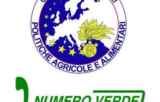 NAC – Nuclei Antifrodi Carabinieri: nessuna tregua contro le truffe agroalimentari