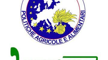 Cibus Tour: il Nucleo Antifrodi dei Carabinieri di Parma impegnati nella lotta all'agropirateria