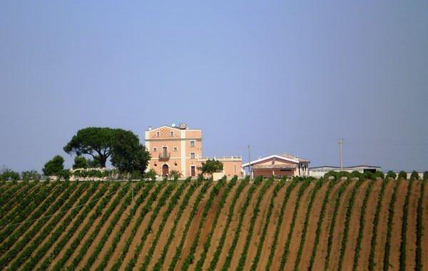 Lucania Travel chef. Turismo di gusto in Basilicata