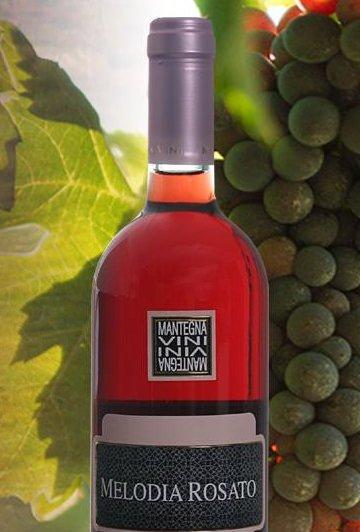 Da Irsina a Sassuolo e ritorno in Lucania, grazie al vino, grazie a Internet