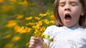 Le allergie e il fegato. Consigli di stagione