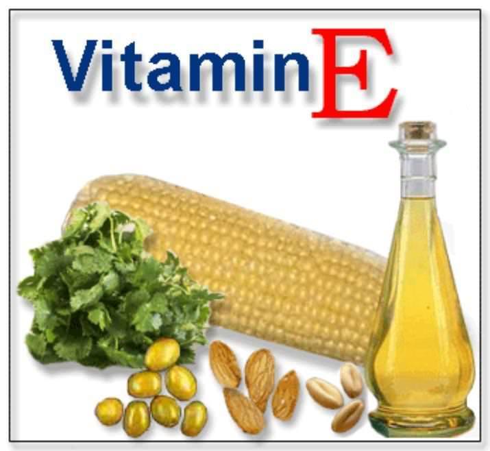 Vitamina E : amica dei muscoli, amica delle cellule