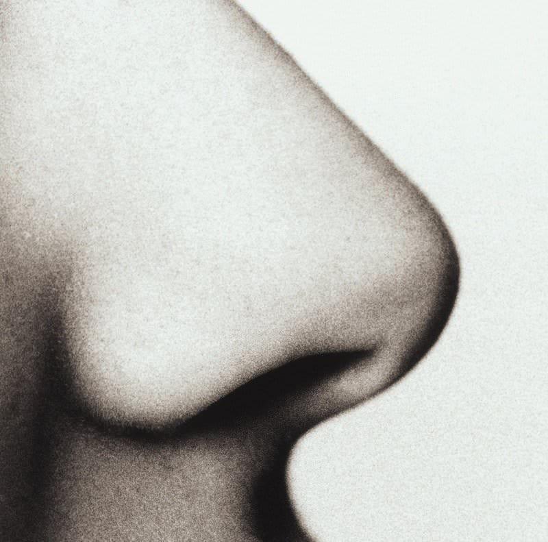 L'obesità aguzza l'olfatto
