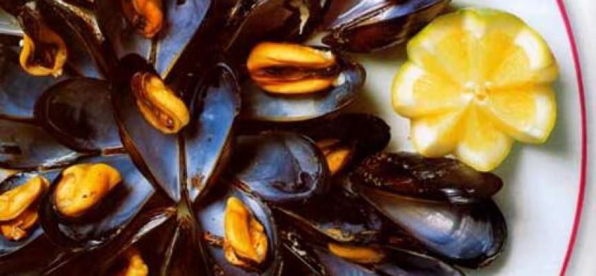 Puglia: torna il Festival della Cozza Tarantina
