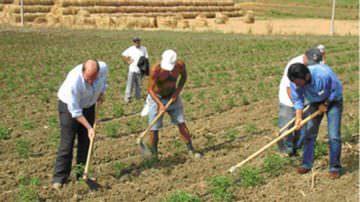 Lavoro: Coldiretti, rinnovato contratto per un mln di operai agricoli