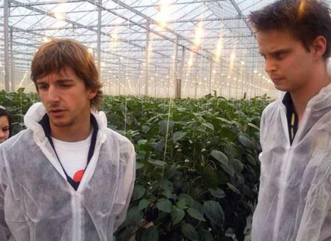 Nell'agricoltura i giovani sono frenati, troppi gli ostacoli al ricambio generazionale