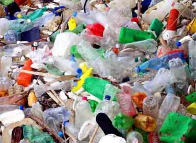 Biodiversità: La plastica uccide, basta proroghe!
