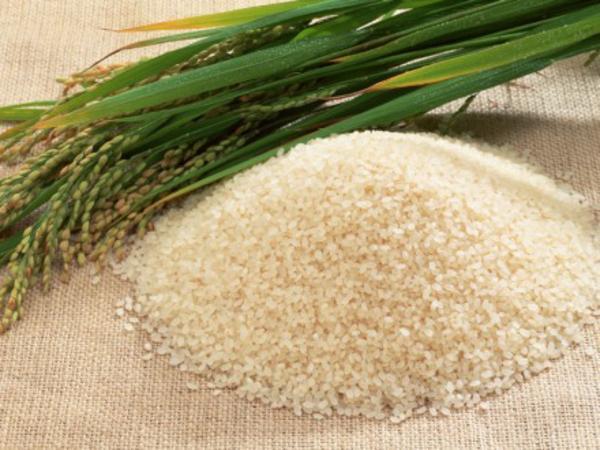 Vinitaly, il riso ed il buono di Latina ricordano la Bonifica dell'Agro Pontino