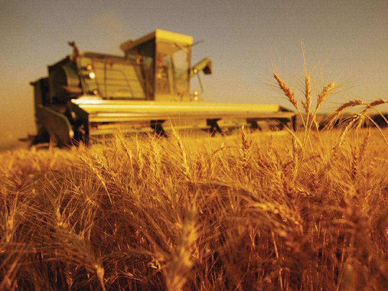 Un ponte tra agricoltori e consumatori