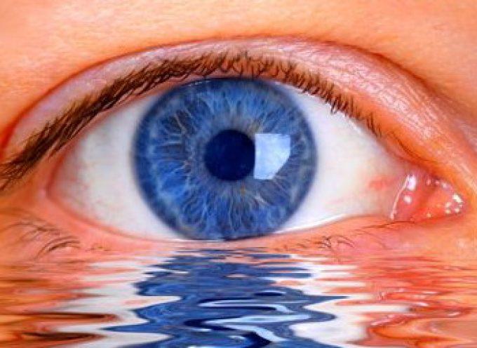 Nella fase REM gli occhi guardano i sogni