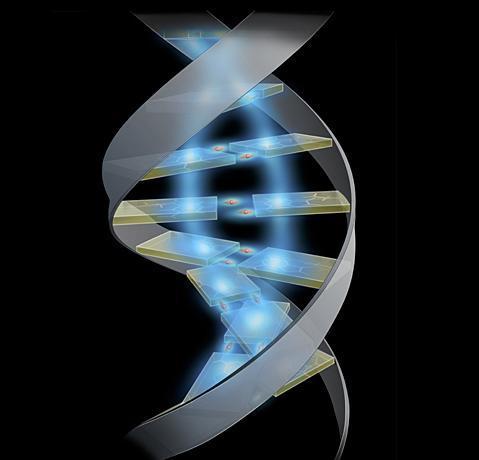 Biotech: subito linee guida di coesistenza e protocolli di sperimentazione