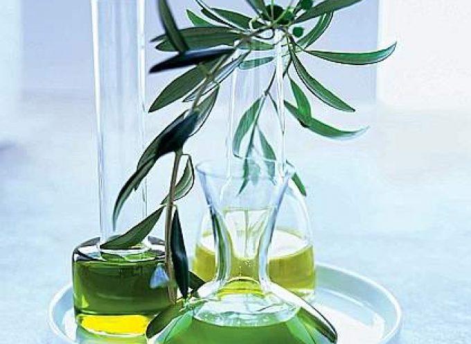 I sapori mediterranei dell'olio extravergine di oliva