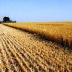 """Bologna: L'assessore regionale all'agricoltura Rabboni: """"Modificare i contenuti della manovra finanziaria"""""""