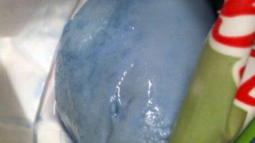 Mozzarelle blu: a causarle, un batterio