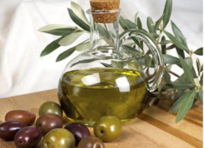 Salone del Gusto: L'olio extra vergine d'oliva di alta qualità del Lazio diventa tour operator