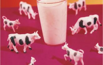 Alla 66.a Fiera del bovino di Cremona resta in sospeso il prezzo del latte