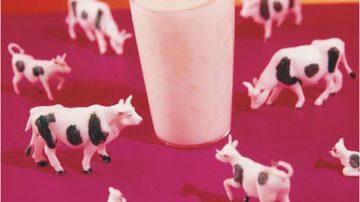 Latte e derivati provenienti dagli eredi delle mucche clonate? Coldiretti dice no!