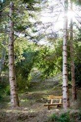 La giostra dei Casali: il Medioevo torna in Valle Sturla