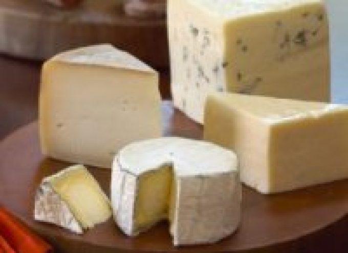 A Cremona dal 28 al 31 ottobre, alla Fiera Internazionale del Bovino Paolo De Castro parlerà di formaggi e dei 38 DOP