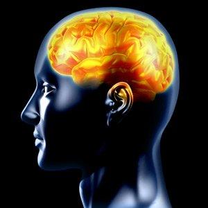 Pochi grassi e zuccheri: così migliora la memoria e si combatte l'Alzheimer
