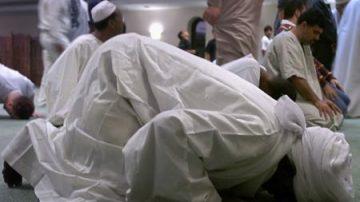 Gran Bretagna, carne di maiale in cibo halal per musulmani