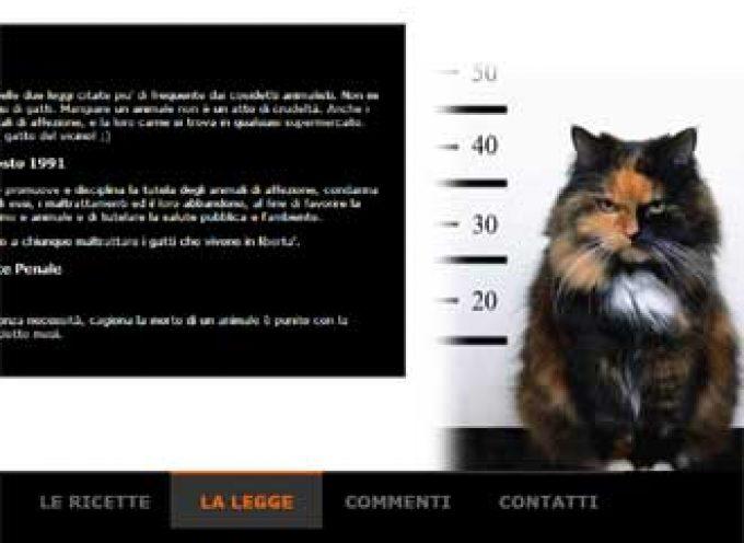 """Gli animalisti contro Mangiagatti.com: """"Chiudete il sito"""""""