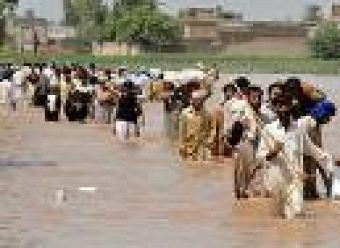 """Alluvioni in Pakistan, l'agricoltura in ginocchio. L'ONU: """"Ci vorranno miliardi di dollari per recuperare"""""""