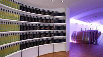 Campagnatico (GR): Cantina Pieve Vecchia inaugura con un connubio tra vino, cibo e cultura