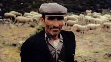 Protesta dei pastori: La Regione Sardegna è pronta a scendere in campo per il rilancio del settore