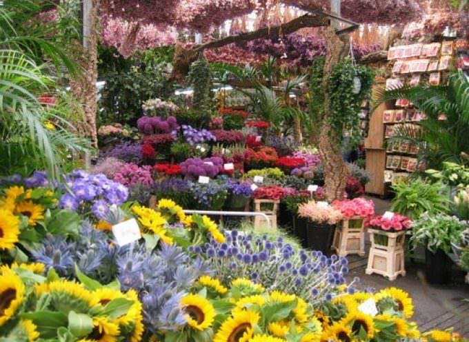 Ricerca: Biotecnologie per il commercio di fiori
