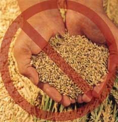 I prodotti destinati a un'alimentazione particolare non possono venire accomunati agli alimenti di uso corrente