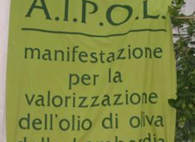 Qualità degli oli extravergini di oliva, l'Università di Perugia a Puegnago del Garda