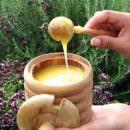 Il miele Ulmo combatte i batteri farmaco-resistenti