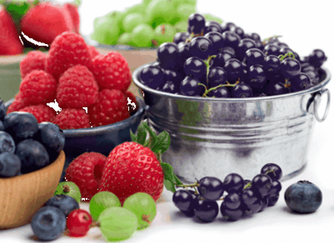 Frutti di bosco: Mangiamoli solo quando è la stagione giusta