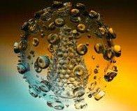 Un unico virus all'origine di raffreddore ed obesità infantile