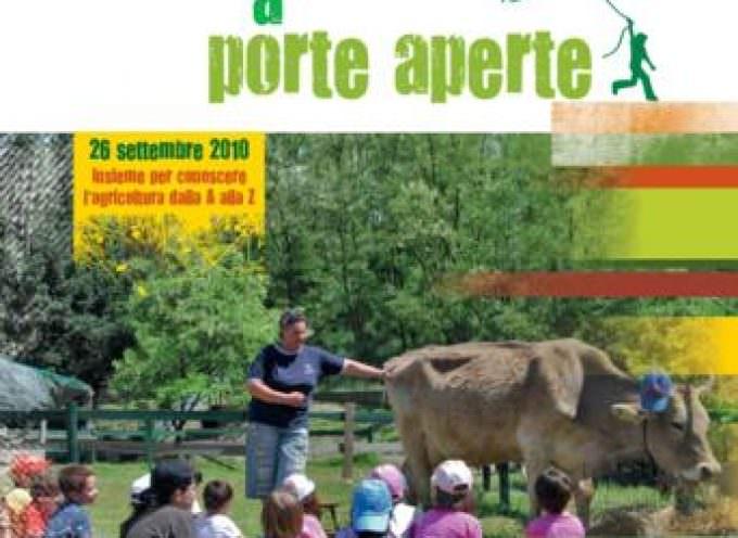 Una domenica tra mucche e pulcini alla riscoperta della vita in fattoria