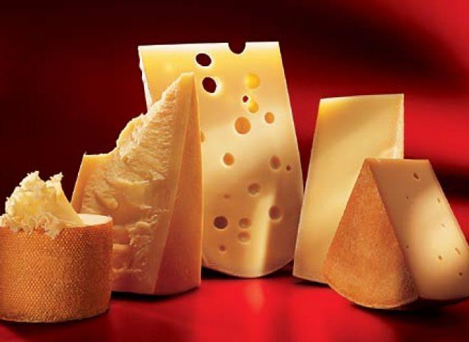 La Svizzera nel piatto: sfida tra blogger all'ultimo formaggio (svizzero)