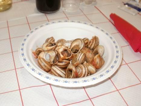 Cherasco (CN): Ha chiuso i battenti il 5° Festival della lumaca in cucina