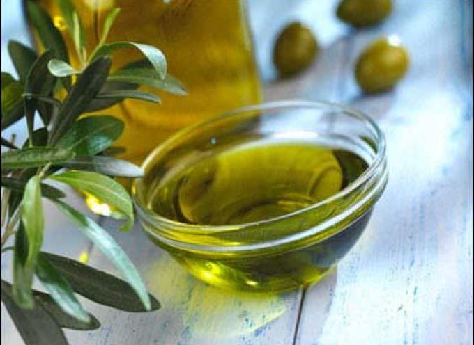 """Coldiretti, Approvata la legge """"salva olio Made in italy"""""""