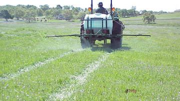 Occupazione: In aumento i lavoratori in agricoltura