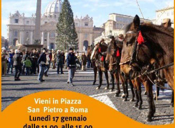 Roma: L'Associazione italiana allevatori festeggia Santo Antonio abate con gli animali