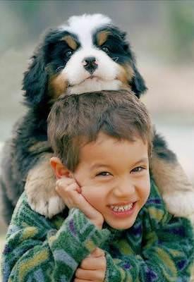 Avere un cane protegge i bambini dalle allergie