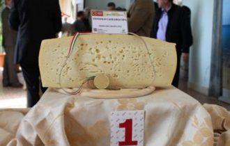 Il formaggio veneto Dop più famoso? L'Asiago Pressato Dop della Toniolo Casearia