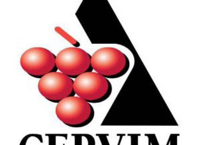 Roberto Gaudio è il nuovo presidente CERVIM