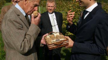 Il Principe Filippo, ahimè, non potrà mai coltivare il tartufo Bianco!
