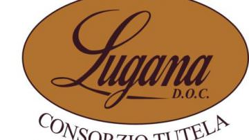 Consorzio di Tutela del Lugana Doc: Nuovo consiglio di amministrazione per il triennio 2010-2013